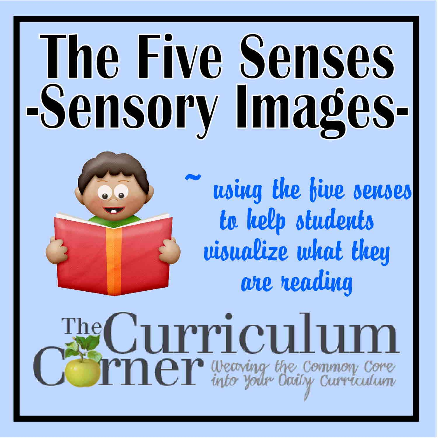 The Five Senses – Sensory Images