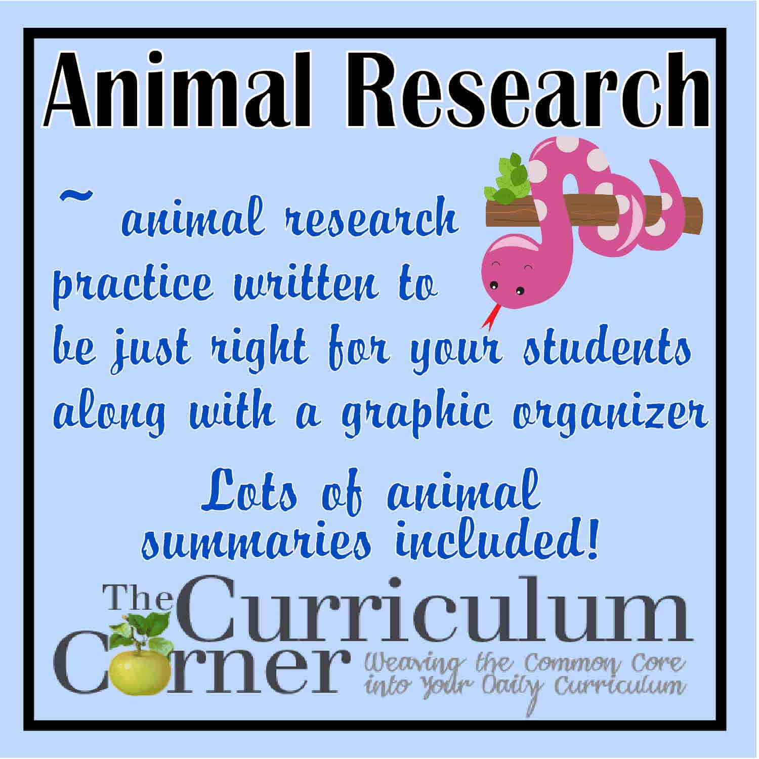 animal testing research paper outline