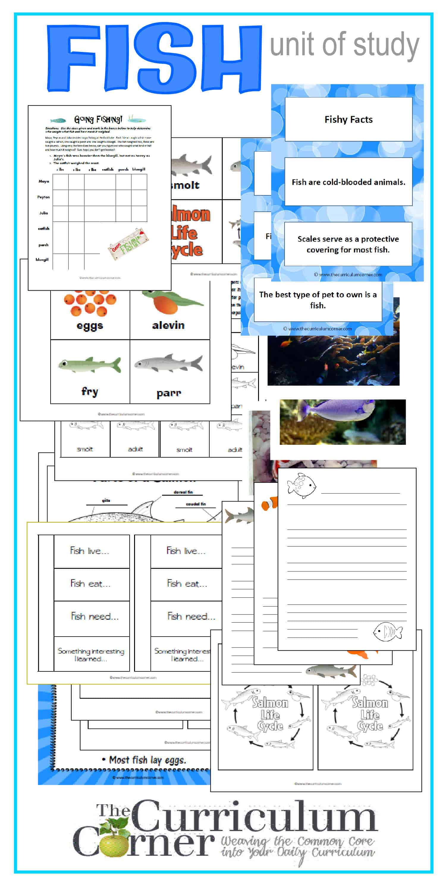 Fish: Mini-Unit Ideas & Interactive Notebook Pages