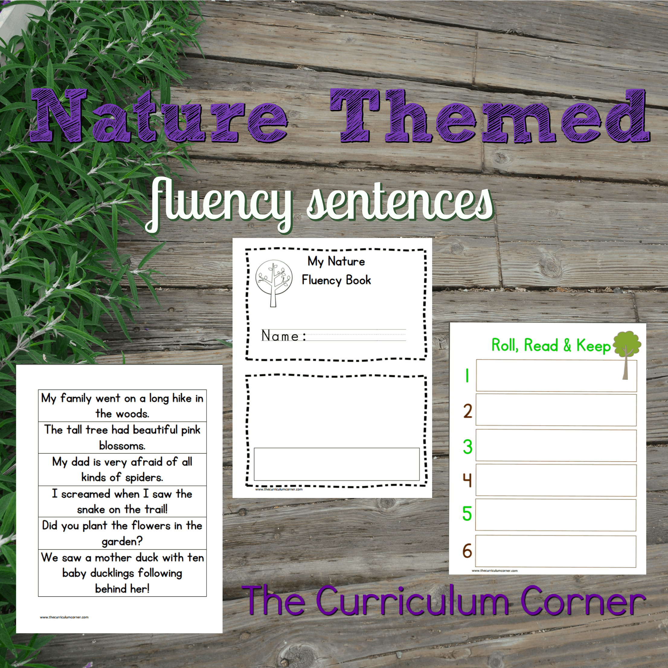 Nature Themed Fluency Sentences