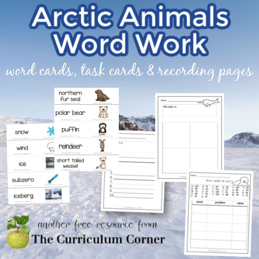 Arctic Word Cards w/ Activities