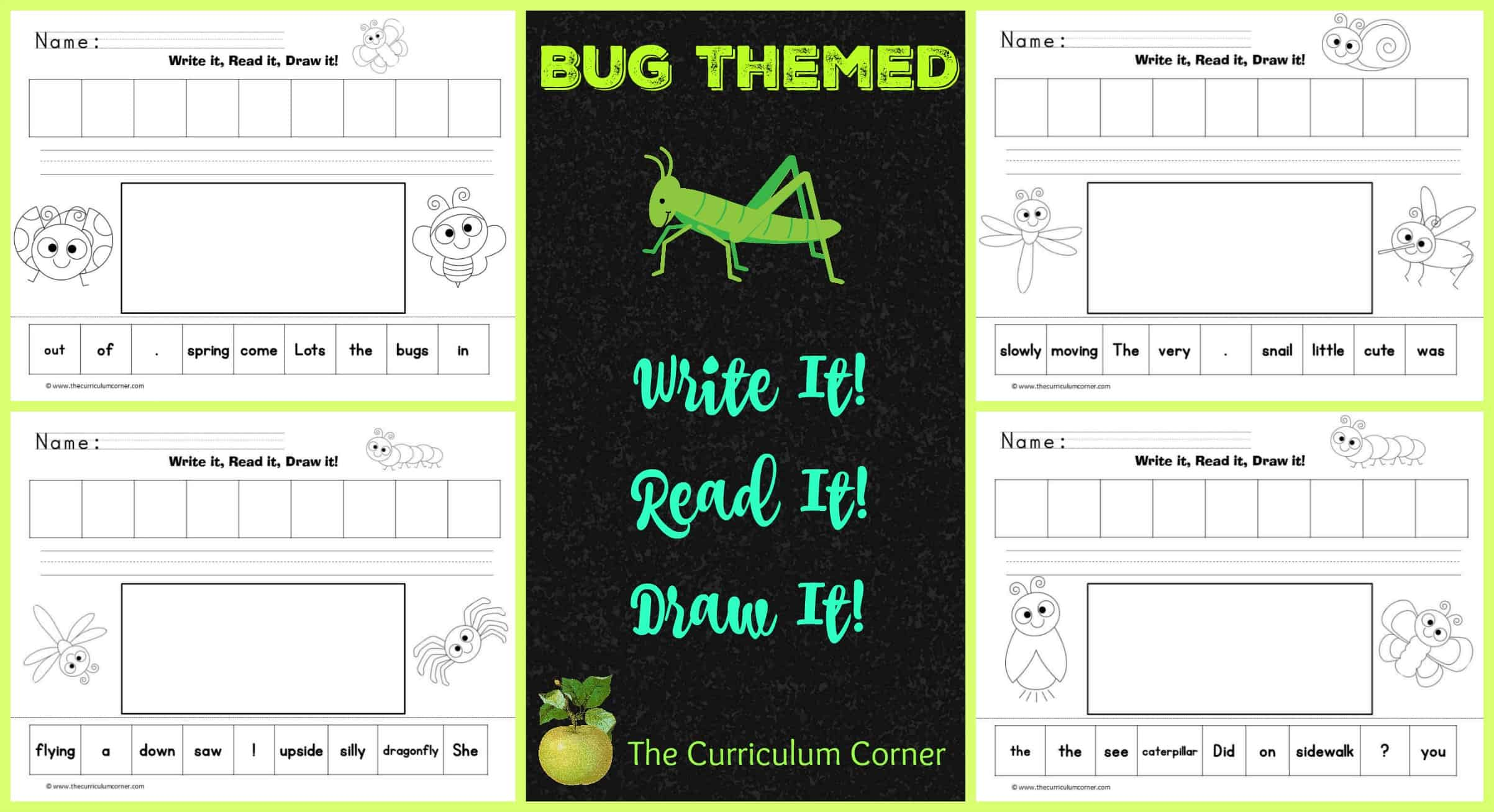 Cute Bugs Read, Write & Draw It!