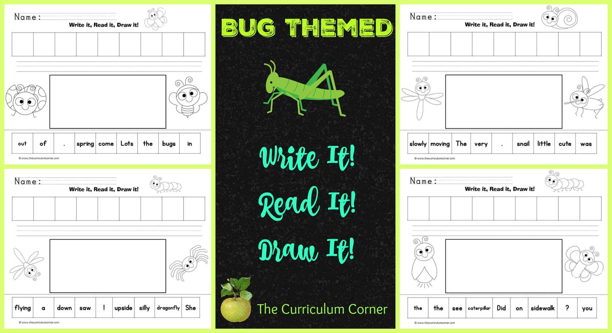 Cute Bugs Read, Write & Draw It!