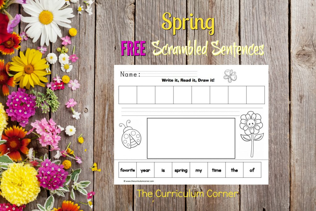 FREE Spring Write, Read, Draw Scrambled Sentences Spring Literacy Center from The Curriculum Corner