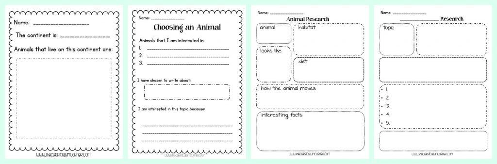 FREE Animal Research Writing Unit of Study from The Curriculum Corner   Researching Animals
