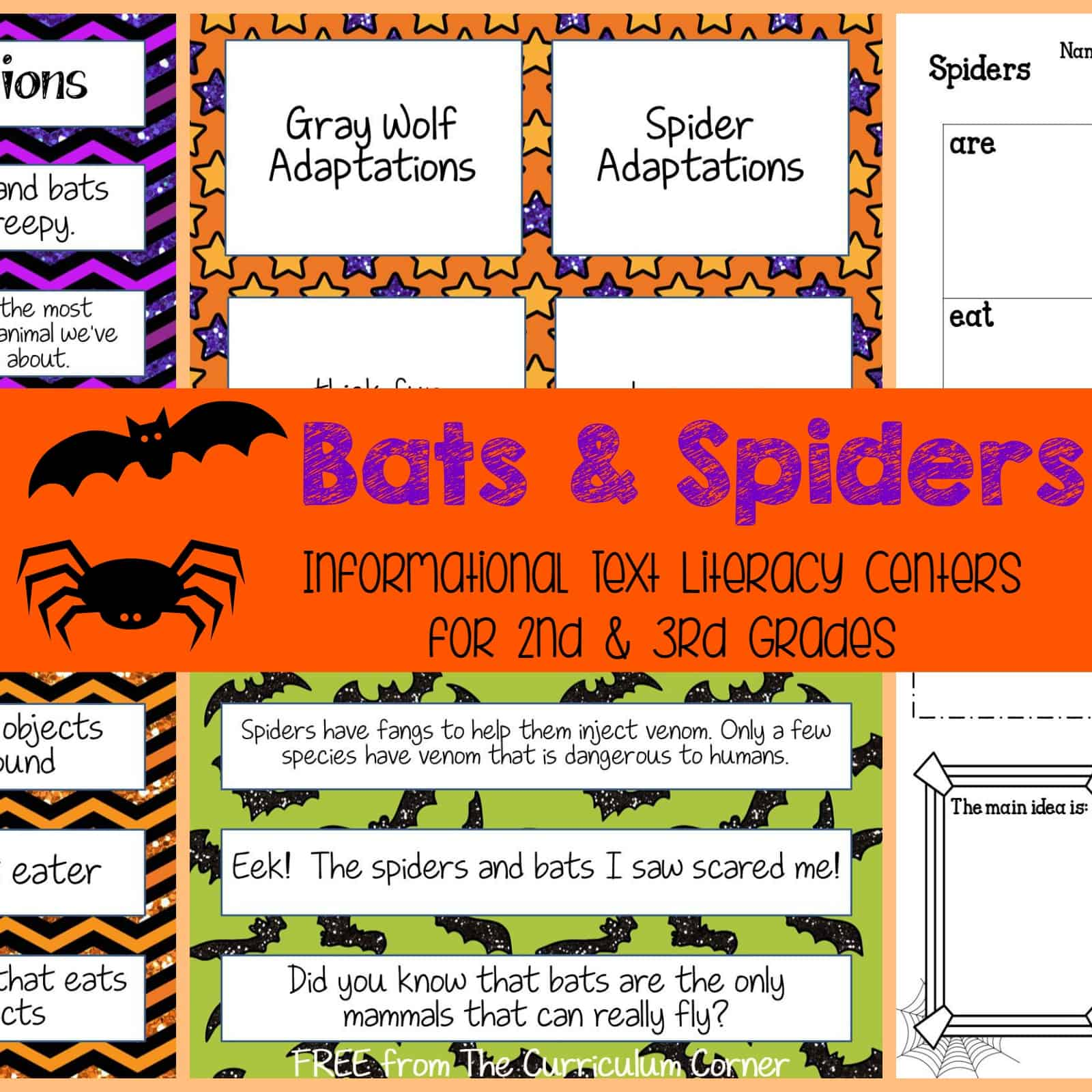 Bats & Spiders (Literacy Centers)