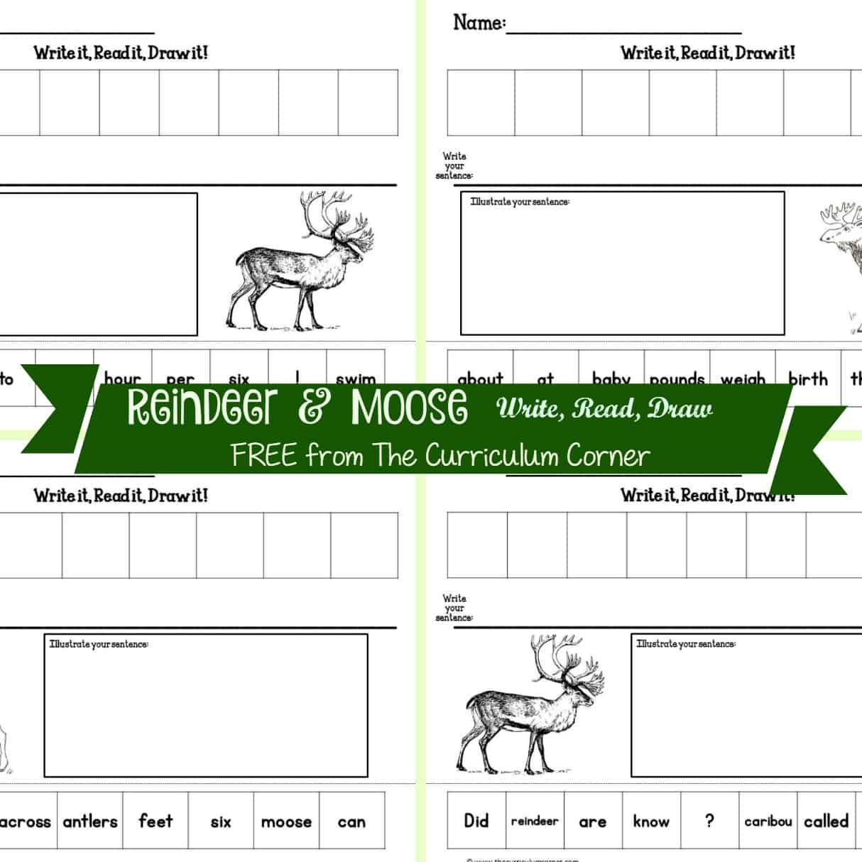 Reindeer & Moose Read, Write & Draw It