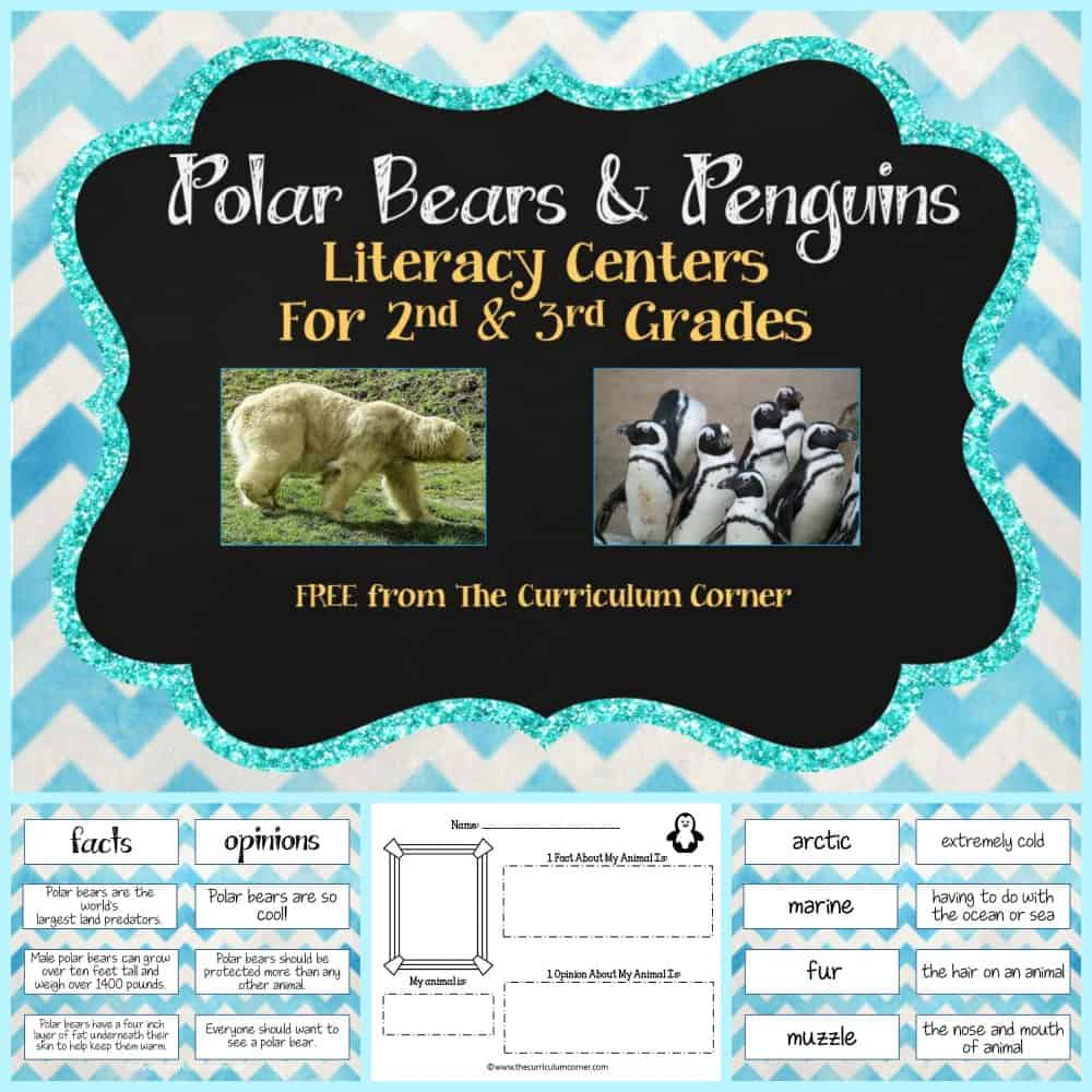 Polar Bears & Penguins (Lit Centers)