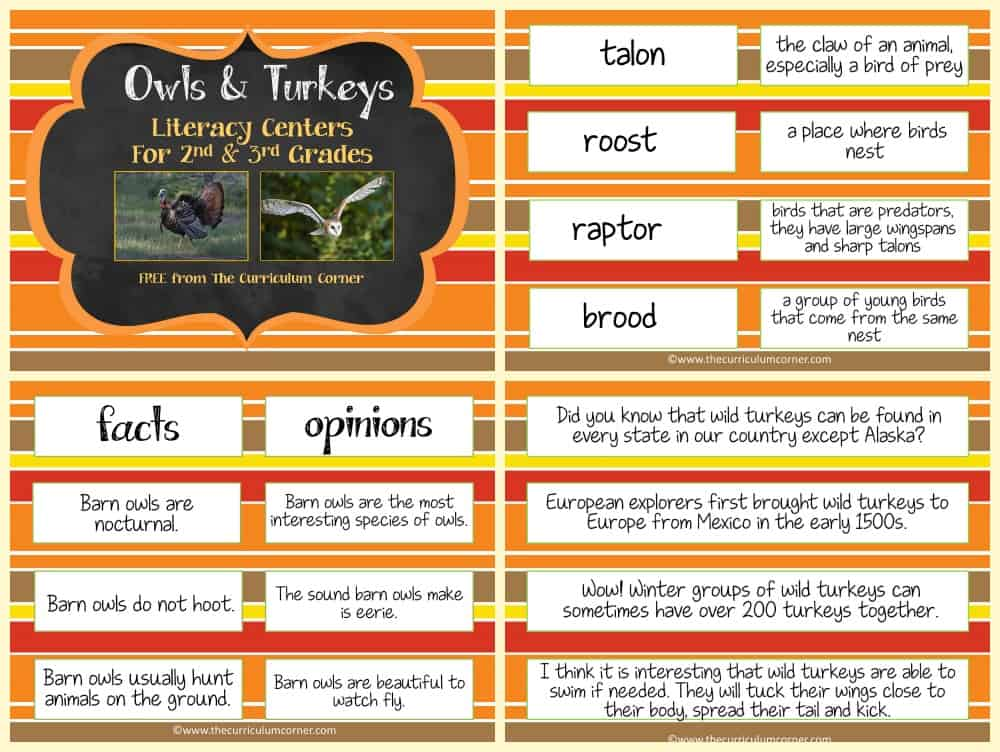 FREE Owls & Turkeys Informational Text Literacy Centers from The Curriculum Corner 2
