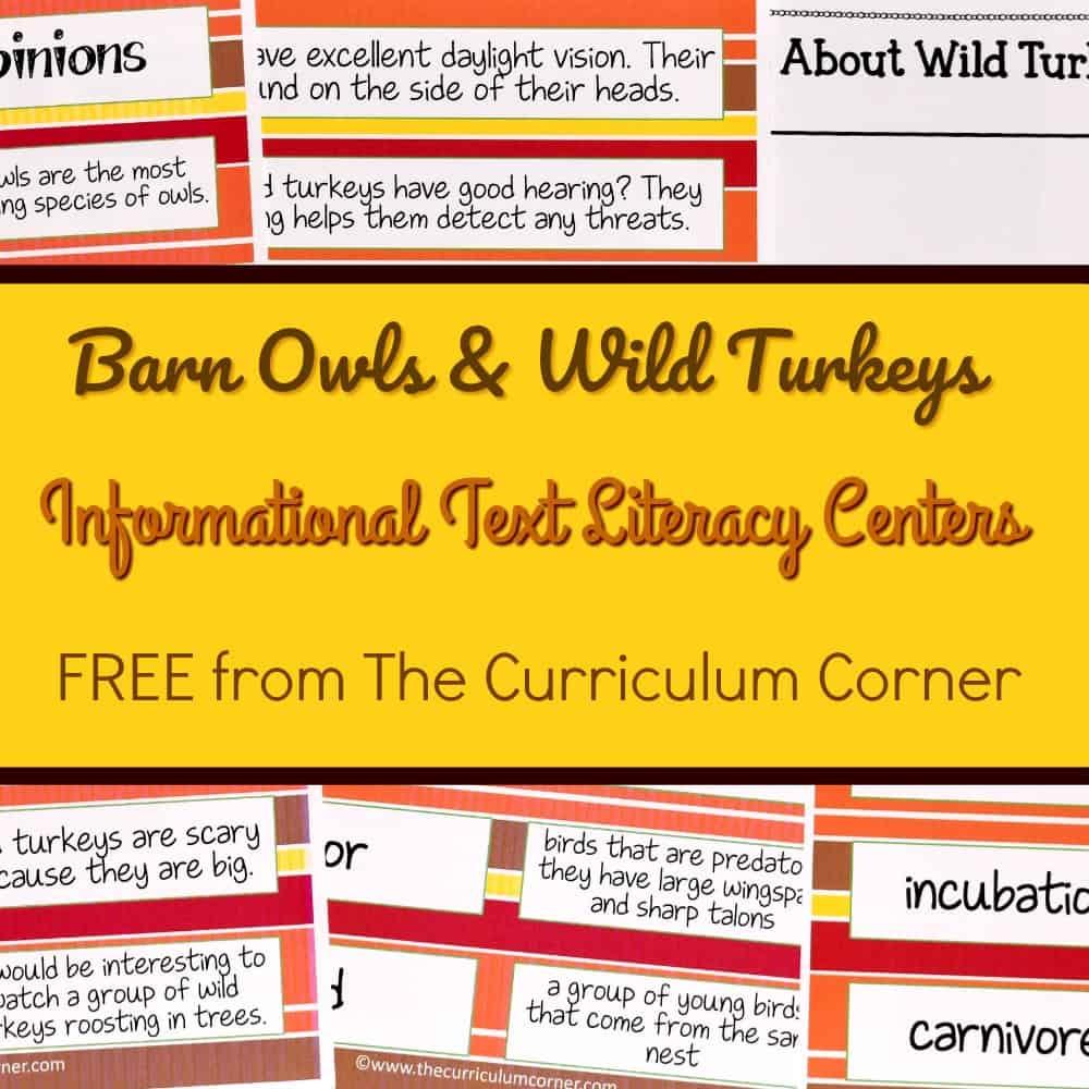 Owls & Turkeys Literacy Centers
