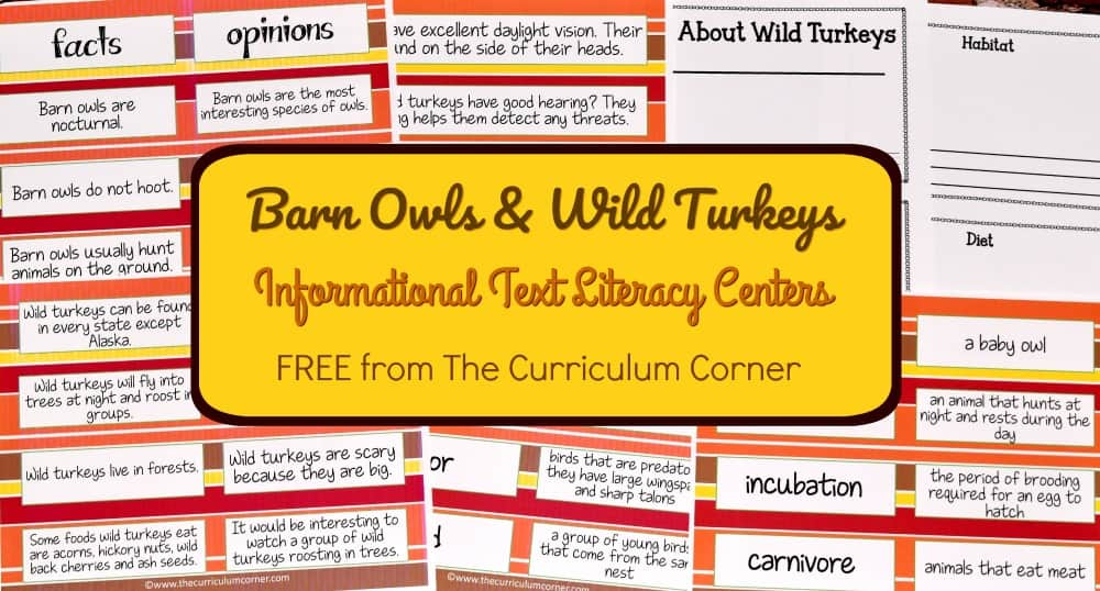 FREE Owls & Turkeys Fall Informational Text Literacy Centers from The Curriculum Corner 6