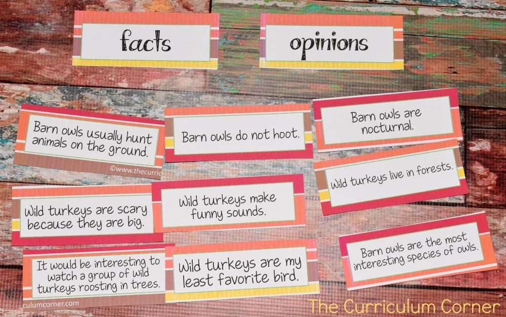 FREE Owls & Turkeys Informational Text Literacy Centers from The Curriculum Corner 7