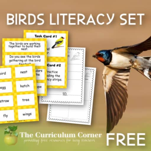 Birds Literacy Set