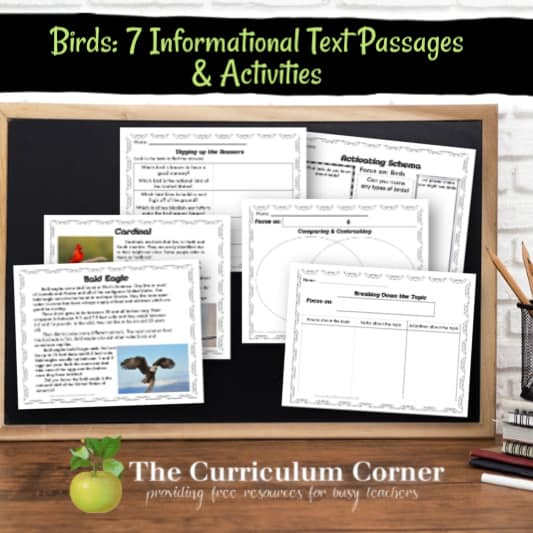 Informational Text Passages & Activities: Birds