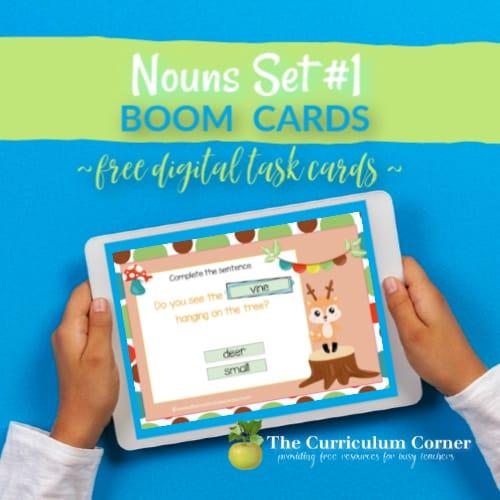 Boom Cards: Nouns Set #1