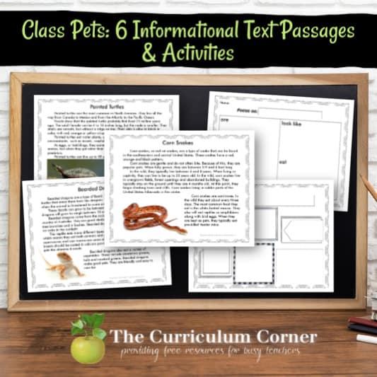 Informational Text Passages & Activities: Class Pets