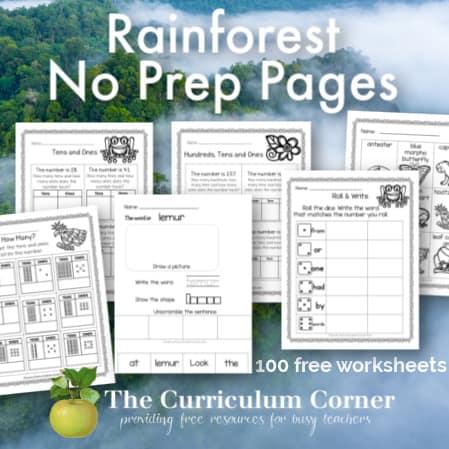Rainforest No Prep Pages