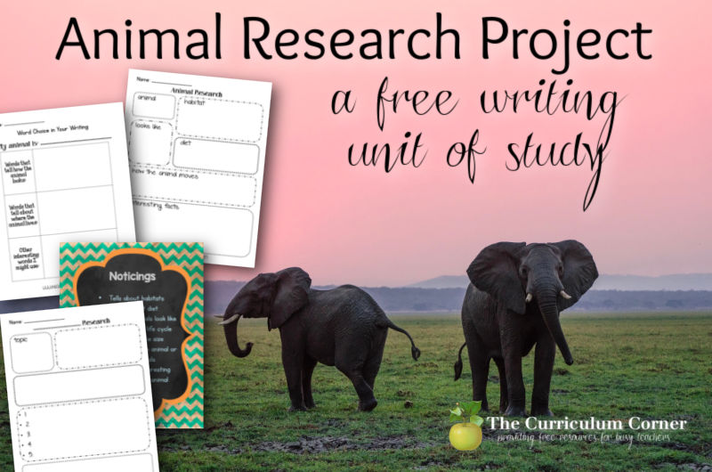 Free animal research project for your writing workshop