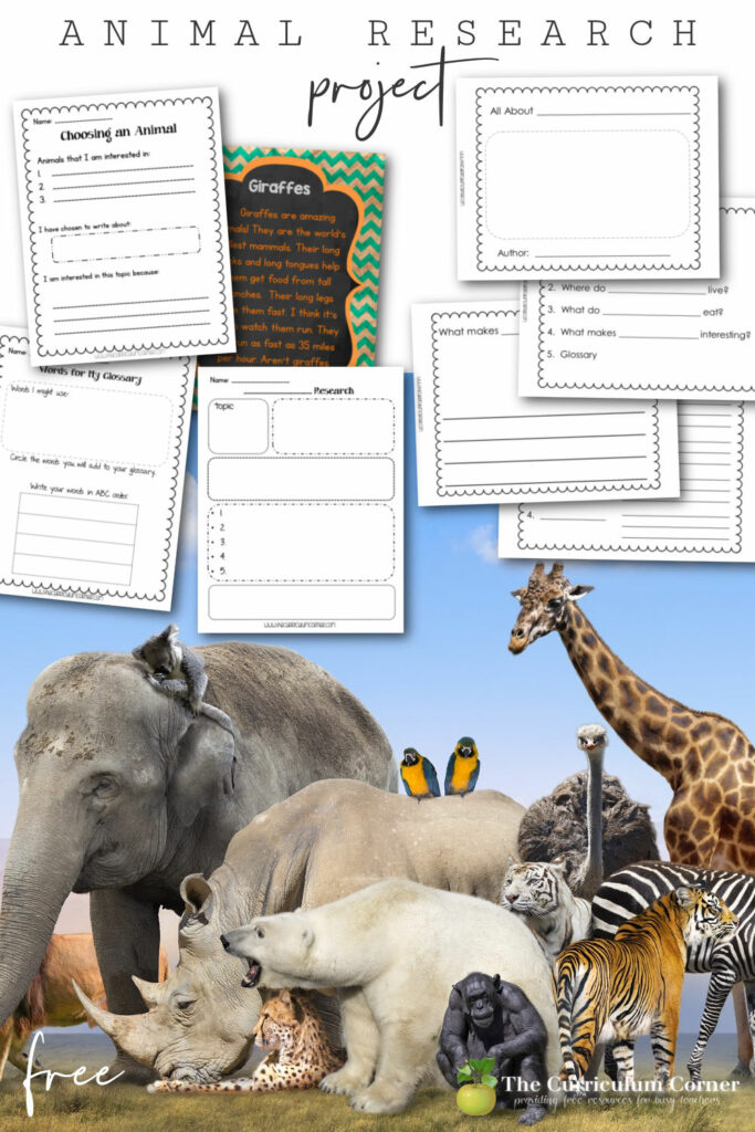 This free animal research project will provide you with a writing unit of study that will help you build excitement about writing informational text in your classroom.