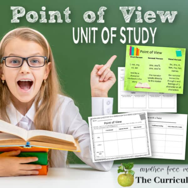 Point of View Mini-Unit