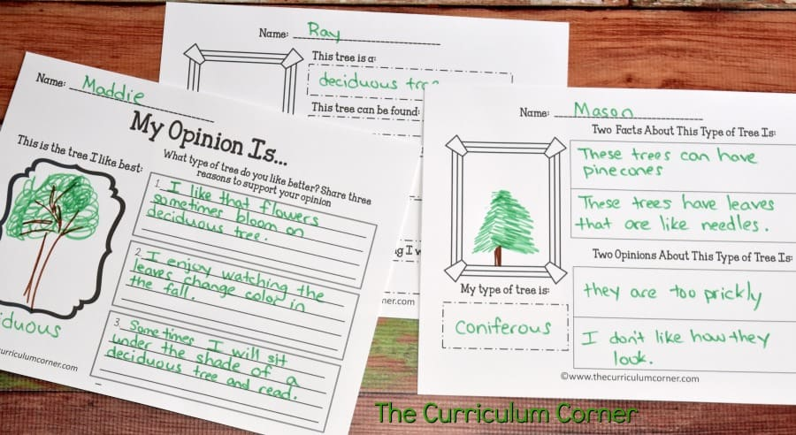Deciduous & Coniferous Trees Science Informational Text Activities from The Curriculum Corner FREE