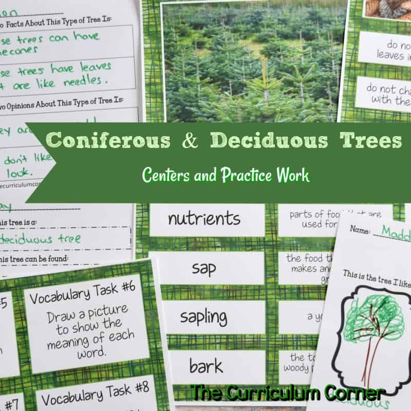 Coniferous & Deciduous Trees
