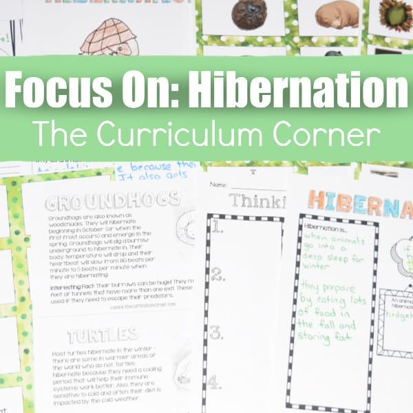 Hibernation Materials for Teachers