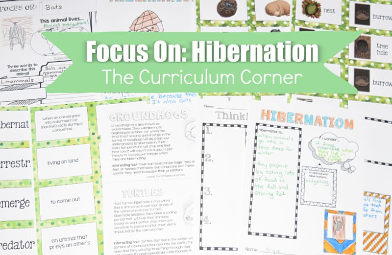 These free hibernation materials have been created to help teachers work with their fourth and fifth grade science students.