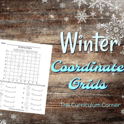 Winter Coordinate Grids