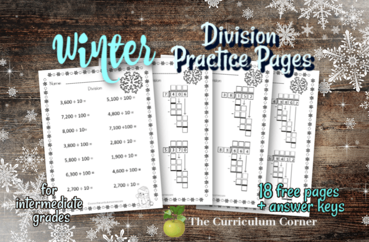 winter division worksheets