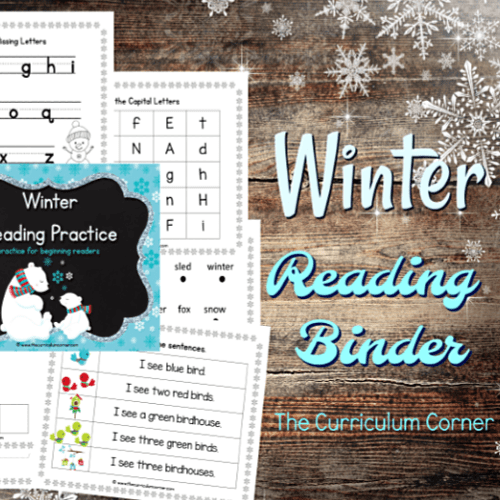 Winter Reading Binder