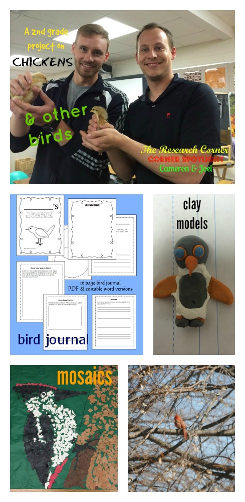 A project on chickens & other birds with free, printable journal from The Research Corner