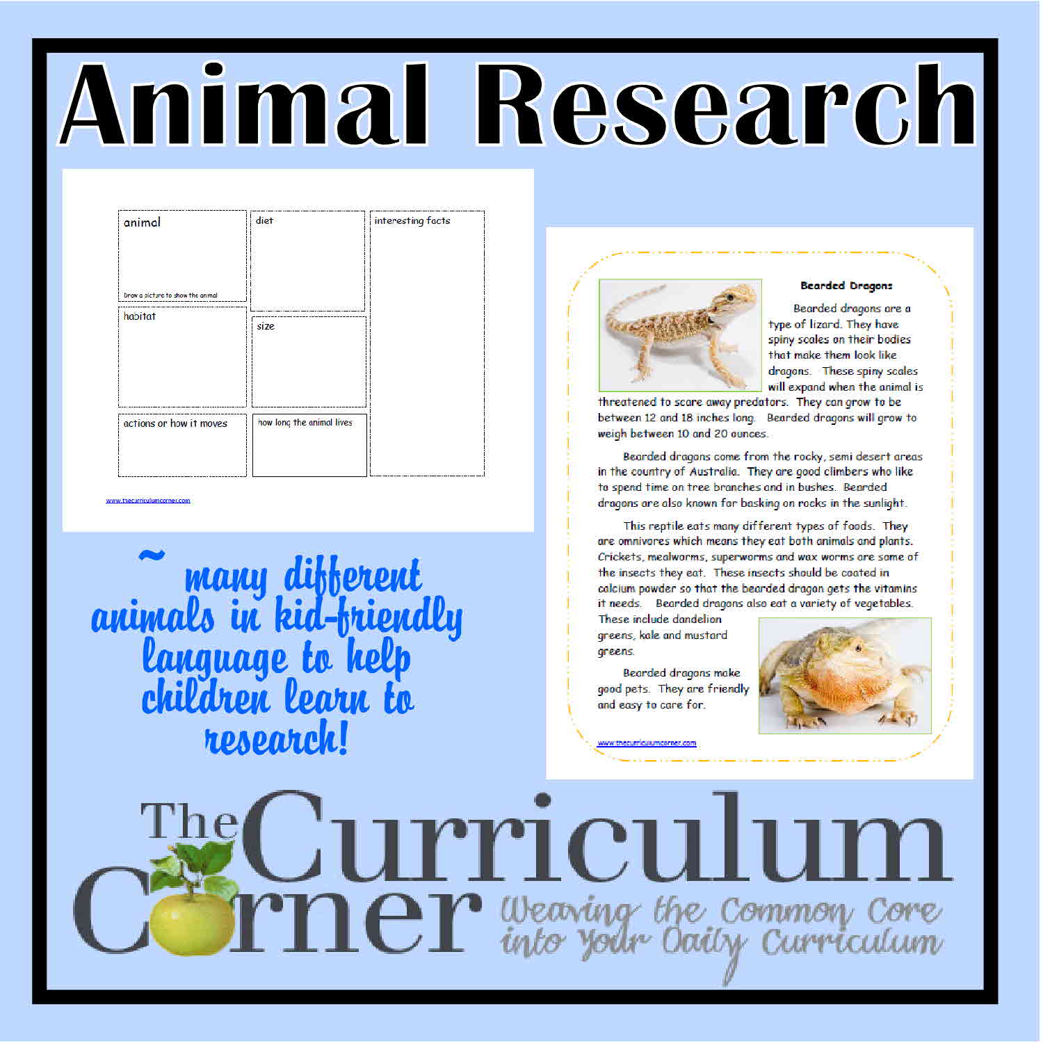 first grade animal research papers Most animal research studies may not avoid key biases  first, if there was an  experimental group and a control group, were animals randomly.